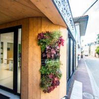 Mur vegetal Yann QUERE Architecte